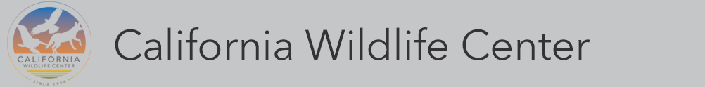 California Wildlife Center's Home Page