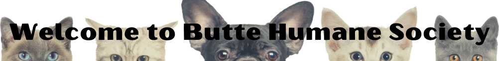 Butte Humane Society's Home Page