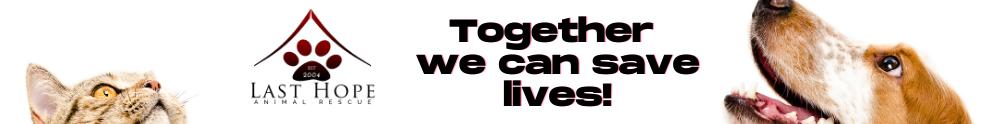 Last Hope Animal Rescue's Banner