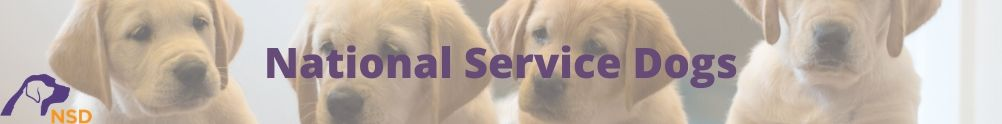 National Service Dogs's Home Page