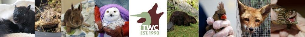 Toronto Wildlife Centre's Home Page