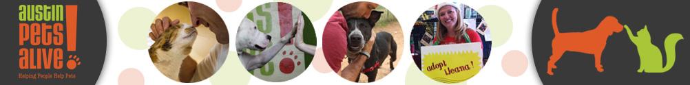 Austin Pets Alive!'s Home Page