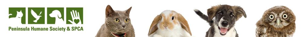 Peninsula Humane Society & SPCA's Home Page