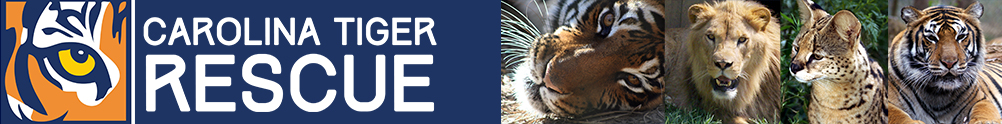 Carolina Tiger Rescue's Banner