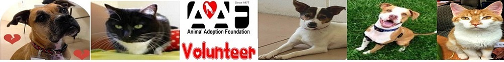 Animal Adoption Foundation's Banner