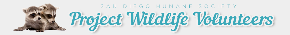 SDHS - Project Wildlife - San Diego Campus's Banner